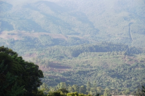 Bvumba Mountains